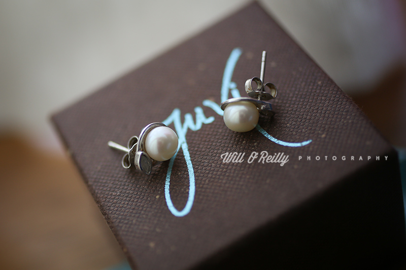 Wedding Photographer Earings